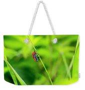 Red Milkweed Beetle Weekender Tote Bag