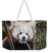 Red Panda Wonder Weekender Tote Bag