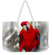 Red Parrot Weekender Tote Bag