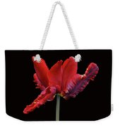 Red Parrot Tulip Weekender Tote Bag