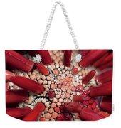 Red Pencil Urchin Weekender Tote Bag
