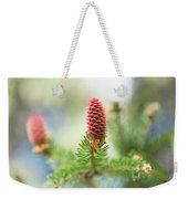 Red Pine Cone In Spring Time Weekender Tote Bag