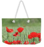 Red Poppy Flower And Green Wheat Nature Spring Scene Weekender Tote Bag