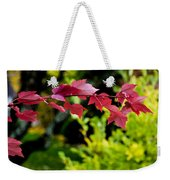 Red Red Maple Leaves Weekender Tote Bag