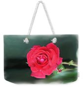 Red-red Rose. Weekender Tote Bag