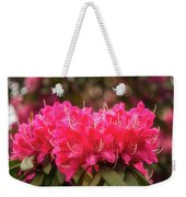 Red Rhododendron Flowers At Floriade, Canberra, Australia. Weekender Tote Bag