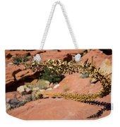 Red Rock Canyon Nv 11 Weekender Tote Bag