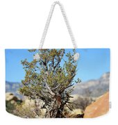 Red Rock Canyon Nv 3 Weekender Tote Bag