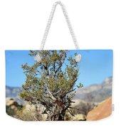 Red Rock Canyon Nv 4 Weekender Tote Bag