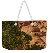 Red Rock Textures Weekender Tote Bag