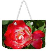 Red Rose And A Sidecar At Pilgrim Place In Claremont-california Weekender Tote Bag