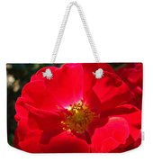 Red Rose Art Print Sunlit Roses Botanical Giclee Baslee Troutman Weekender Tote Bag