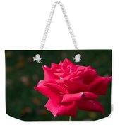 Red Rose Profile Weekender Tote Bag