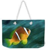 Red Sea Clownfish  Weekender Tote Bag