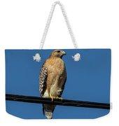 Red-shoulder Hawk Weekender Tote Bag