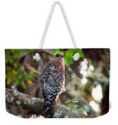 Red-shouldered Hawk Weekender Tote Bag
