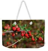 Red Spring Buds Weekender Tote Bag