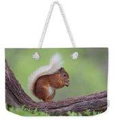 Red Squirrel Curved Log Weekender Tote Bag