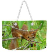 Red Squirrel In The Cherry Tree Weekender Tote Bag