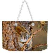 Red Squirrel Pictures 144 Weekender Tote Bag
