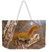 Red Squirrel Pictures 145 Weekender Tote Bag