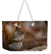 Red Squirrel Pictures 170 Weekender Tote Bag