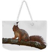 Red Squirrel Transparent Weekender Tote Bag