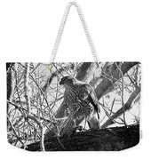 Red Tail Hawk In Black And White Weekender Tote Bag by Deleas Kilgore