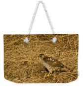 Red Tail Hawk Walking Weekender Tote Bag