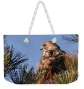 Red Tail In The Pines Weekender Tote Bag