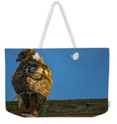 Red Tailed Hawk  IIi  Weekender Tote Bag