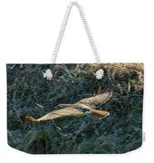 Red Tailed Hawk  In Flight Weekender Tote Bag
