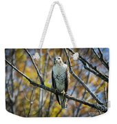 Red-tailed Hawk In The Fall Weekender Tote Bag