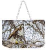 Red Tailed Hawk,  Weekender Tote Bag by LeeAnn McLaneGoetz McLaneGoetzStudioLLCcom