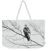 Red-tailed Hawk On Perch Weekender Tote Bag