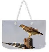 Red Tailed Hawk Perched Weekender Tote Bag