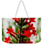 Red Texas Plume Flowers Weekender Tote Bag