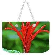Red Tropical Flower In Huntington Botanical Gardens In San Marino-california  Weekender Tote Bag