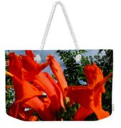 Red Trumpeter Weekender Tote Bag