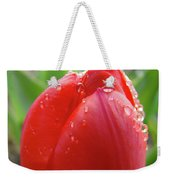 Red Tulip Flower Macro Artwork 16 Floral Flowers Art Prints Spring Dew Drops Nature Art Weekender Tote Bag