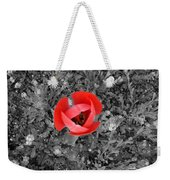 Red Tulip From Above Weekender Tote Bag