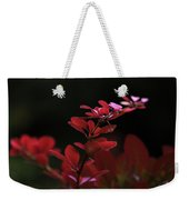 Red Twilight Weekender Tote Bag