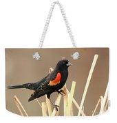 Red Winged Blackbird I I Weekender Tote Bag