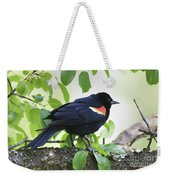 Red Winged In Montreal Weekender Tote Bag