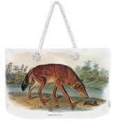 Red Wolf (canis Lupus) Weekender Tote Bag