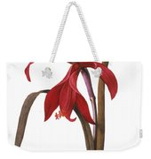 Redout�: St. James Lily Weekender Tote Bag