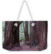 Redwood Grove Weekender Tote Bag