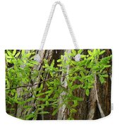 Redwood Tree Art Prints Baslee Troutman Weekender Tote Bag