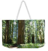 Redwood Trees Forest California Redwoods Baslee Weekender Tote Bag