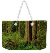 Redwoods And Ferns Weekender Tote Bag